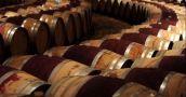 Vinos: las exportaciones volvieron a caer en abril y el sector acumula cinco meses seguidos en baja