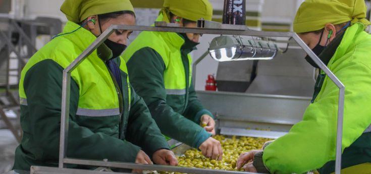 La Rioja ocupa el puesto 8 entre las ciudades del país con mayor nivel de empleo